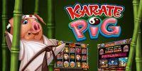 karate-pig